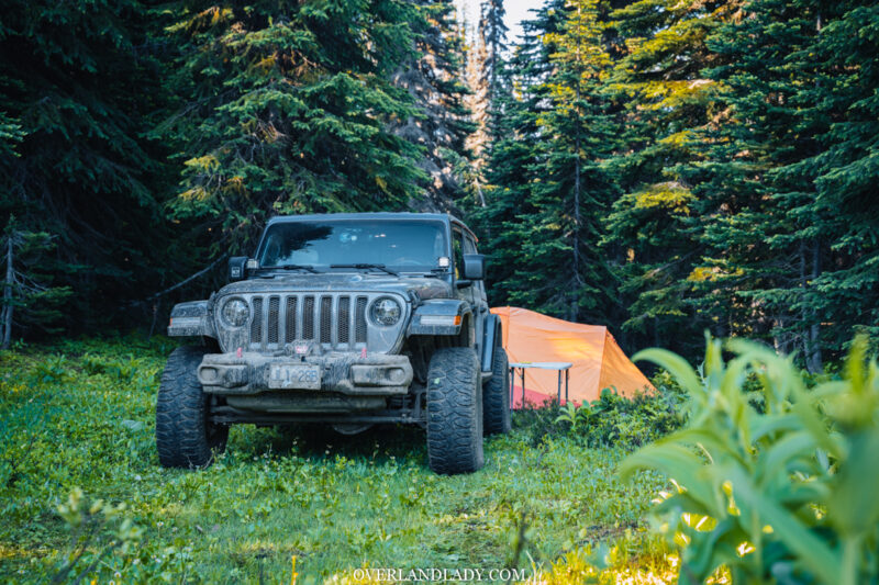 jeep jl rubicon camping in woods