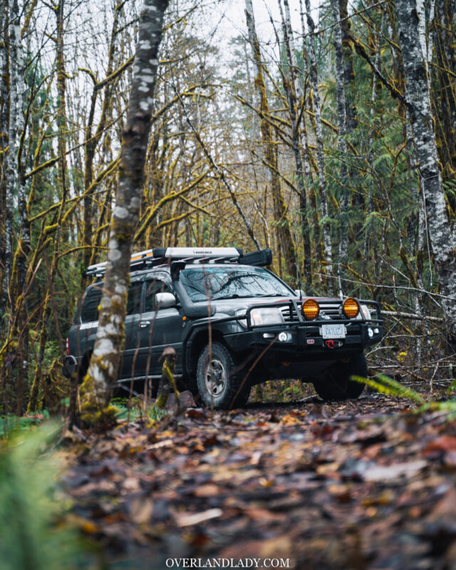 Landcruiser 100 Series in the woods 2 | Overland Lady by Monique Song