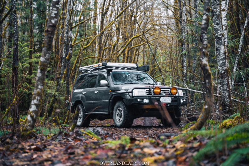 Landcruiser 100 Series in the woods | Overland Lady by Monique Song